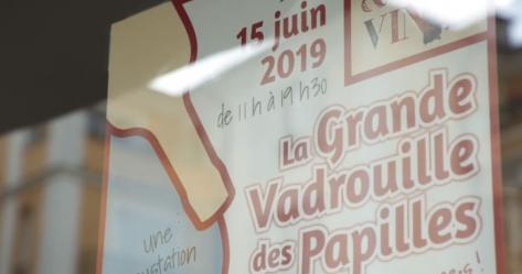 Captation d'évènement La grande vadrouille des papilles 2019